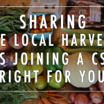 Sharing the Local Harvest: Is Joining a CSA Right For You?