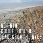 Wading into the Kiddie Pool of Dividend Growth Investing
